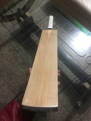 English Willow Cricket Bat( 17 grains, prominent, straight) Inventec