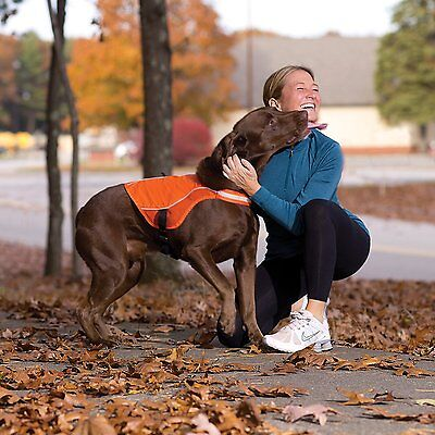 Kurgo Reflect & Protect Active Dog Vest Sicherheitsweste