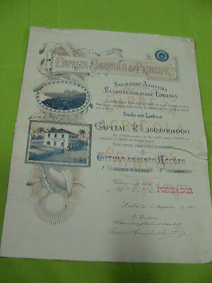 Agricultural company Prince 1900 - five share certified