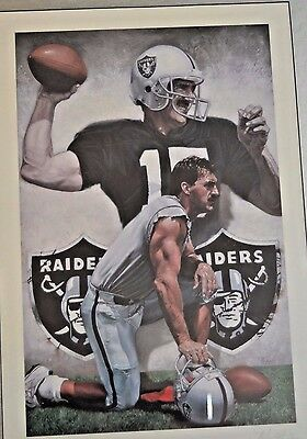 Autographed Raiders Jeff Hostetler No 15 Beautifully Framed Art Conservation Gls