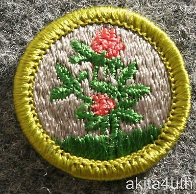 BSA Forage Crops Merit Badge - Discontinued Type H - Boy Scout