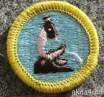 BSA General Science Merit Badge - Type H Discontinued - Boy Scout