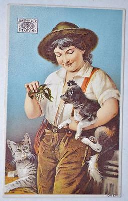 1890 James Pyle's Pearline Lobster Dog Cat Advertising Victorian Trade Card NY