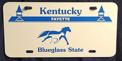 KENTUCKY USA VEHICLE SAMPLE License Plate Blank