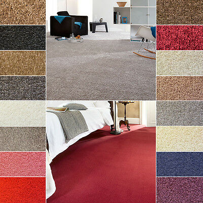 Quality NEW Felt Backed Twist Pile Carpet , CHEAP - 4M Width!!