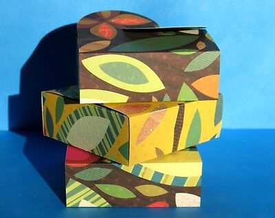 Rain Forest - Any Occasion Gift Boxes