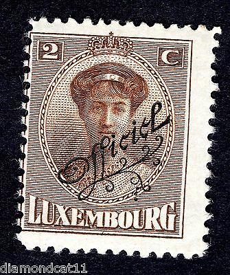 1922 Luxembourg 2c Brown OPTD OFFICIEL SG O251 MOUNTED MINT R24623