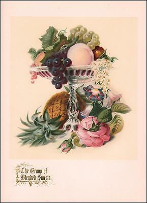 FLOWERS & FRUIT, GROUP OF BLENDED SWEETS by Paul Jerrard, vintage print 1948