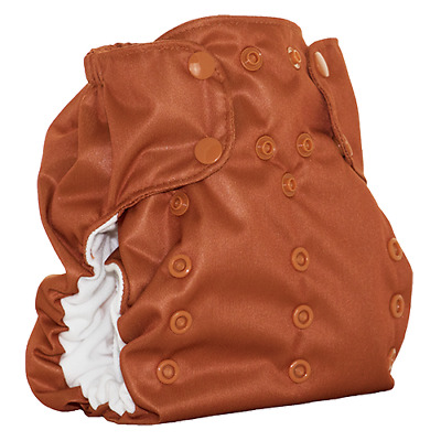 LUCKY DREAM DIAPER - All-In-One Diaper by Smart Bottoms