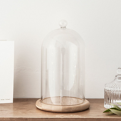 Regular Glass Cloche Bell Jar Dome with Bamboo Tray by Lights4fun