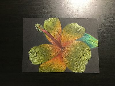 ACEO Original Hibiscus Flower  Drawing