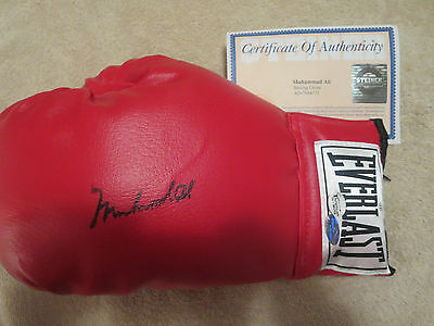 Muhammad Ali Signed Boxing Glove Oa & Steiner Gorgeous