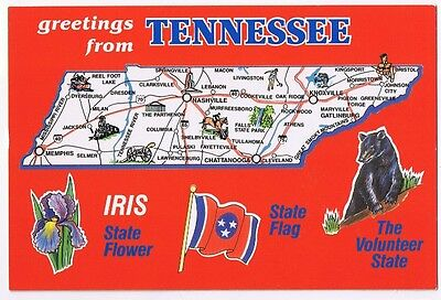 Map Of Tennessee With State Flower & Bird  Postcard  # A4-1039