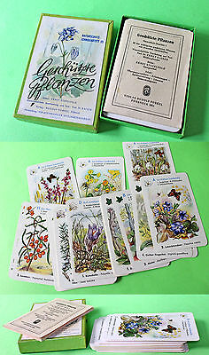 "1954 Vintage German Child Playing Cards – ""rare Plants"""