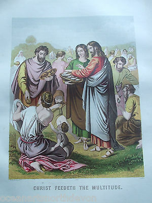 Antique Print C1870's Christ Feedeth The Multitude Brown's Holy Bible Religion