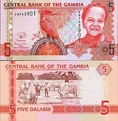 Gambia,  5 Dalasis,  2013,  P-New,   Unc,  Banknote,  Africa