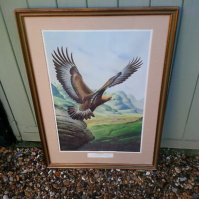 Eagle Star Insurance,golden Eagle  Picture In Frame, Limited Edition No.193