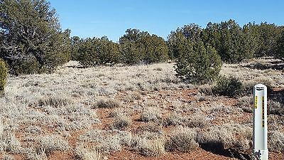 5.9 acres vacant land Snowflake Arizona - two road access  - MUST SELL