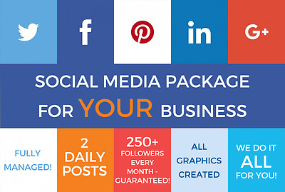 Custom Social Media Marketing For Your Business: Facebook & Twitter Package