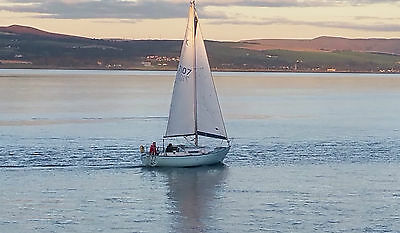 Sadler 25 Sailing yacht with good trailer included