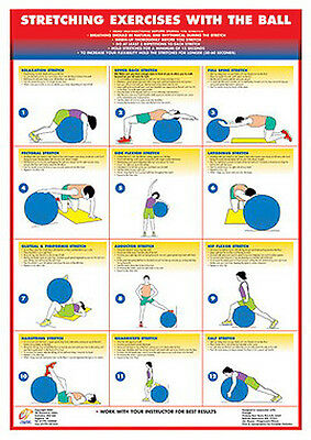 STRETCHING EXERCISES w/SWISS BALL Professional Fitness Wall Chart Workout POSTER