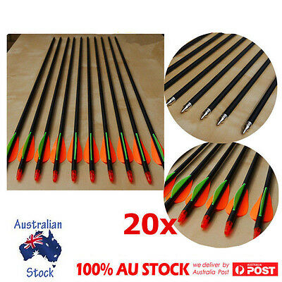 "20Pcs 32"" FiberGlass Arrows Archery Hunting Compound Bow Fiber Glass Bows w/ Tip"