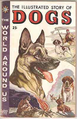 1958 The World Around Us The Illustrated Story Of Dogs # 1