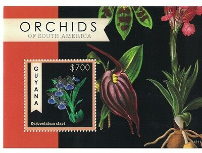 Guyana - 2012 Flowers Orchids of South America - Sc 4131 S/S MNH