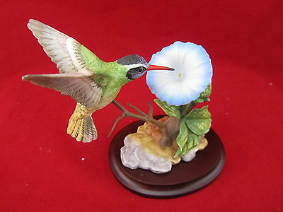 Maruri USA White Eared Hummingbird With Morning Glory Porcelain & Bronze Figurin