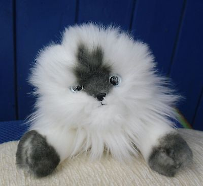"""Lovely Ty Classic Cat """"peaches""""  With Blue Eyes, No Paper  Tag 2006"""