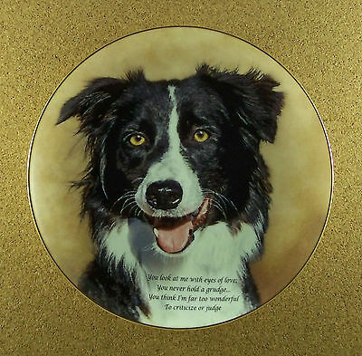 Cherished Border Collies EYES OF LOVE Plate Dog Danbury Mint Collie Charming!