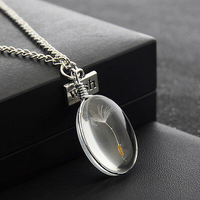 Fashion Natural Dandelion Charm Jewelry Pendant Chain Crystal Choker Necklace
