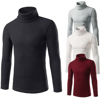 Men Turtle Neck Knitwear Casual Sweaters Tops Blouse Shirts Pullover Slim Coats