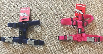 Red Dingo Harness Small Size 15mm