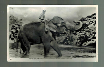 1940s Ceylon RPPC postcard Cover to FranceTemple Elephant in Katugastota River