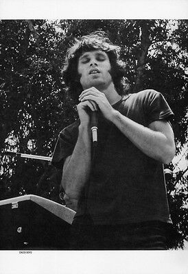The Doors Poster Page . Jim Morrison . L5