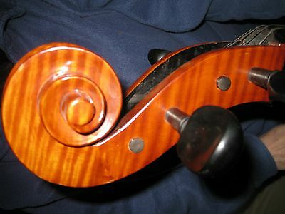A beautiful cello, in very good condition.  Larsen strings.