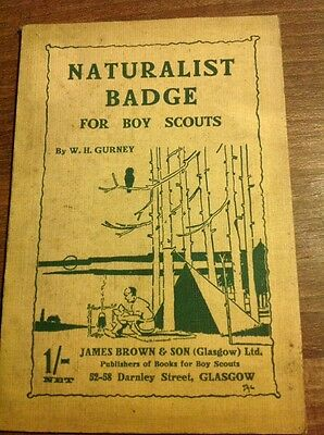 Naturalist Badge For Boy Scouts by W H Gurney Vintage Scout Paperback 1923