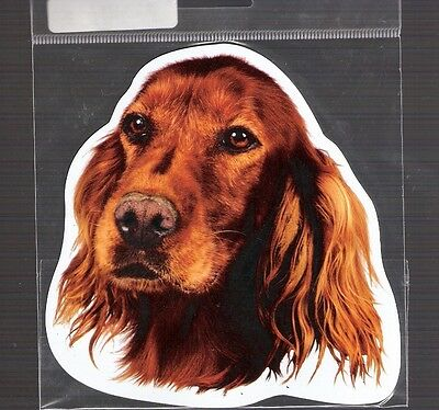Irish Setter 4 inch face magnet for car or anything metal     New