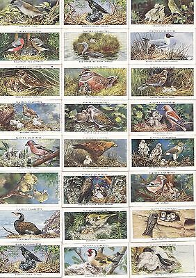 Players 1937 Birds & their Young Complete set of 50