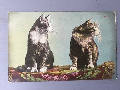 """antique Funny postcard of cats signed """"rats"""" Posted In 1911"""