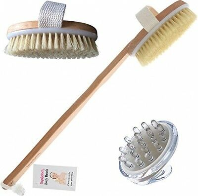 TopNotch® Body Brush With Natural Bristles Long Handle PLUS Cellulite Massager