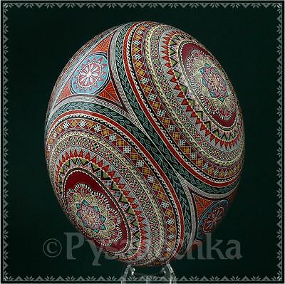 Real Ukrainian Pysanka. Ostrich Pysanky Best by Halyna. Easter Egg Osterei