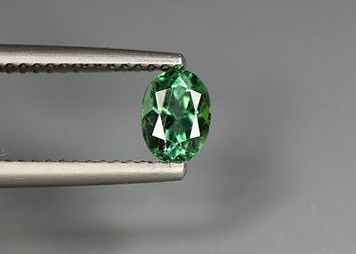 0.65 Cts_Simmering Ultra Nice Gemstone_100 % Natural Neon Green Apatite_Brazil