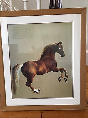Framed print of oil painting 'Whistlejacket' by George Stubbs