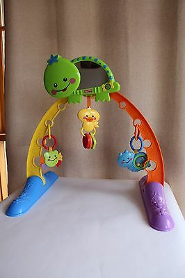 Fisher Price Activity Play Gym