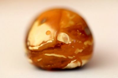 9,8g Natural Baltic Sea Amber marble white tiger vintage amber pendant drop 天然琥珀