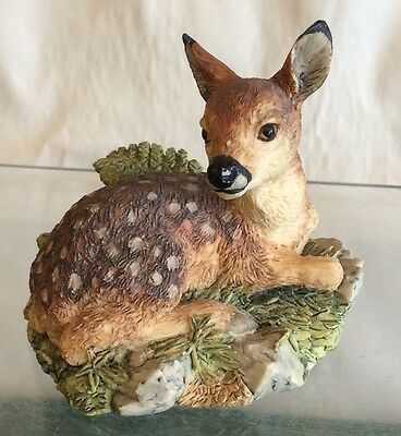 "Border Fine Arts Roe Deer Fawn "" Morning Mist  """