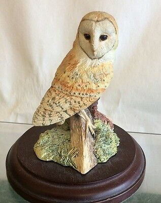 "Border Fine Arts Barn Owl "" Night Watch """