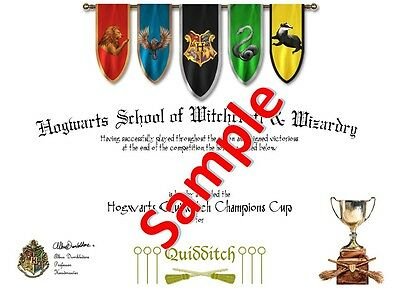 Harry Potter / Hogwarts - Quidditch Team Certificates (4 Houses & All Positions)